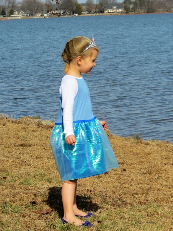 Elsa Dress made from Oliver + S Field Trip Raglan Tee